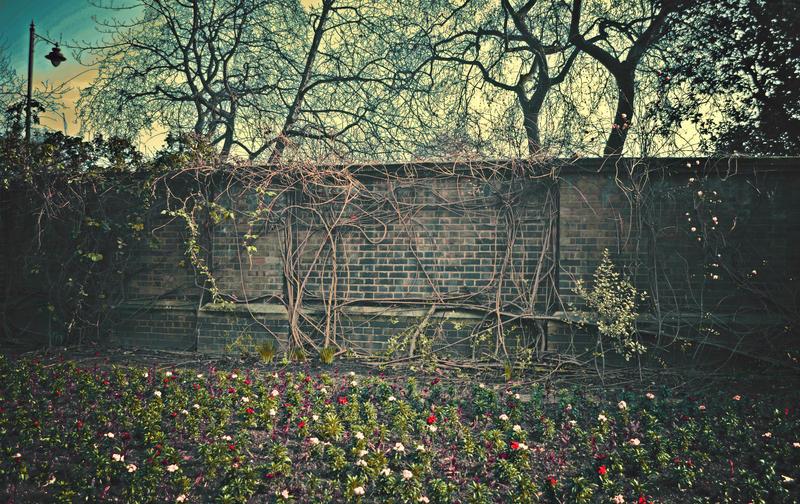 The Wall of The Secret Garden by CasheeFoo