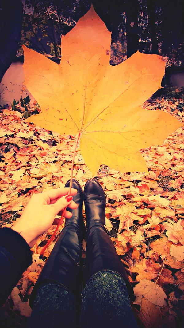 Autumn's Treasure by CasheeFoo