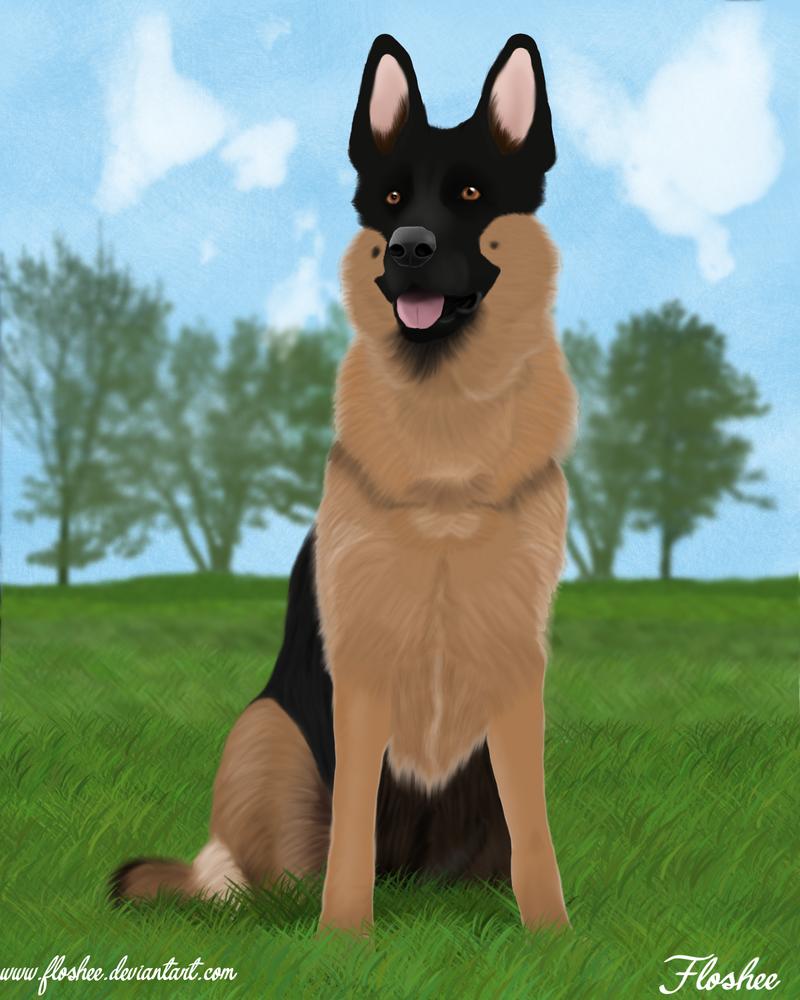 A German Shepherd by Floshee