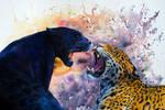 Black jaguar and leopard - watercolor and gouache