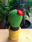 Hora de un cactus!! by Tejed0r