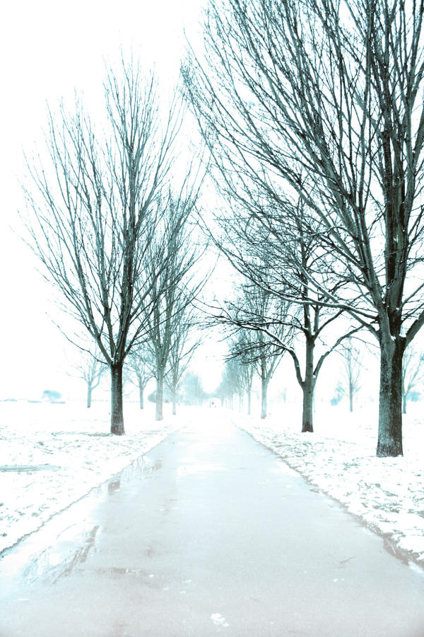 Winter Glau by LeLionNoire