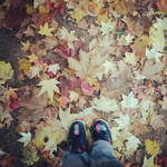 Autumn leaves by Celystine