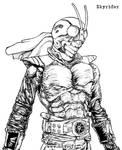 Kamen Rider - Skyrider