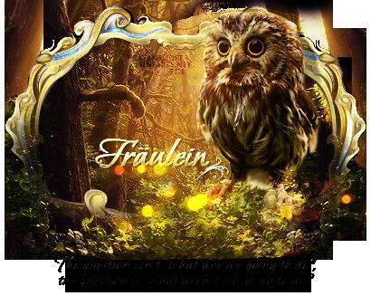Owl by Ayanashii