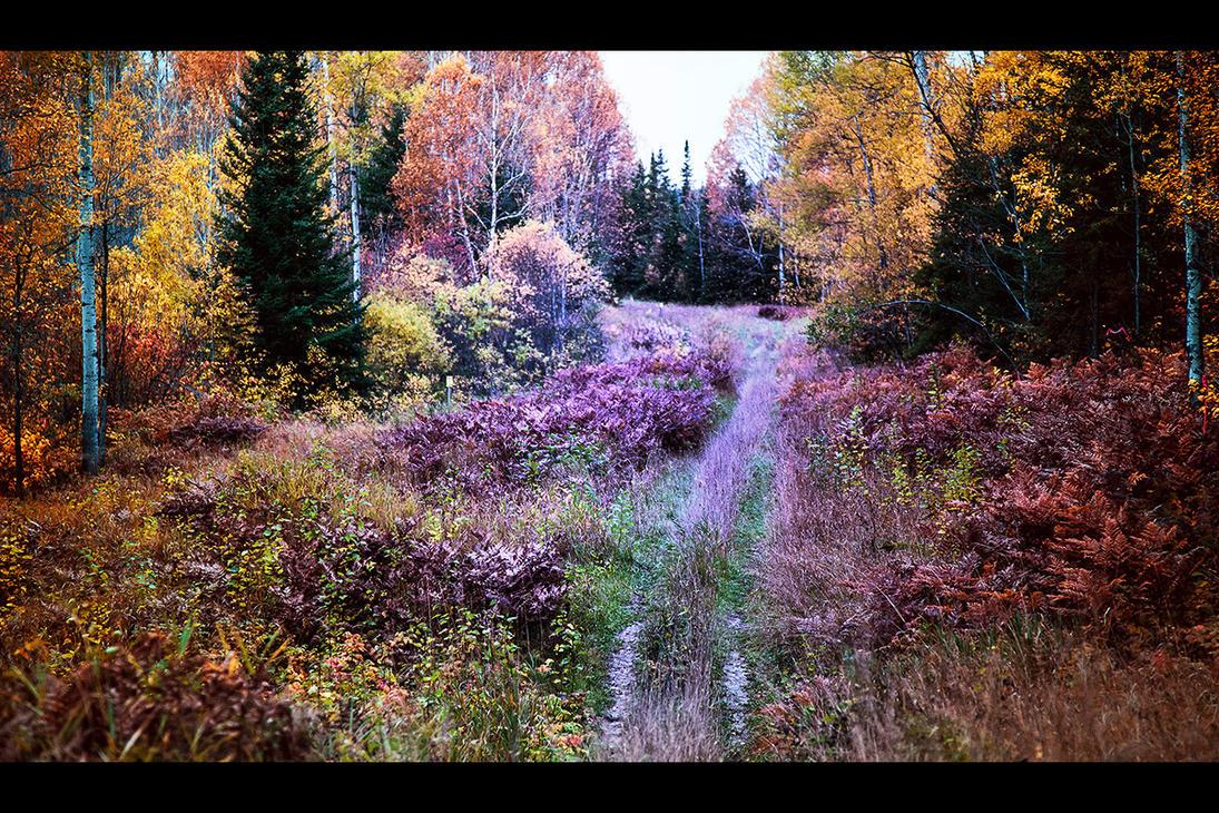 Oktober by Vesperal
