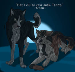 Be Your Pack