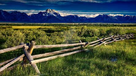 Grassy field, mountain far away