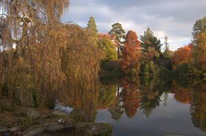 Autumn landscape by ancoben