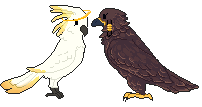 Bird Gfs by die-s
