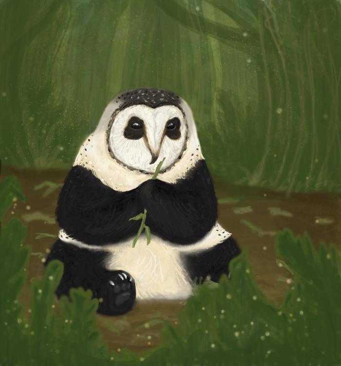 Owlpanda by Amateuritis