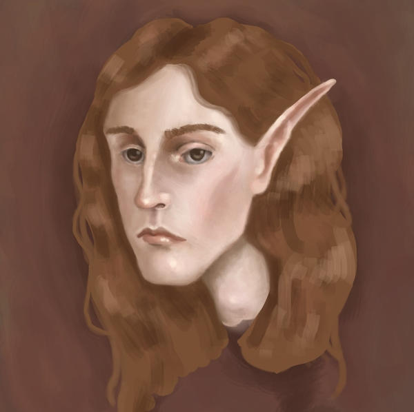 Elven noble by MuseOfMelancholy