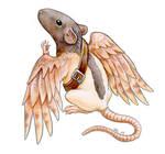 Messenger Rat