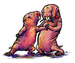 Naked Mole Rat Tango