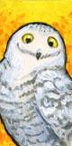 Teeny Tiny Snowy Owl