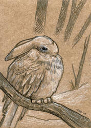 Cold Rabbird by ursulav