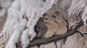 Rabbirds: Mourning Doves