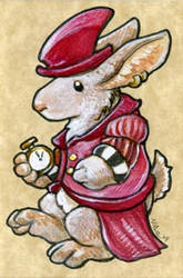 The Rabbit in Red