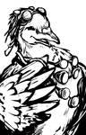 Goggle Pigeon