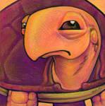 Judgmental Turtle