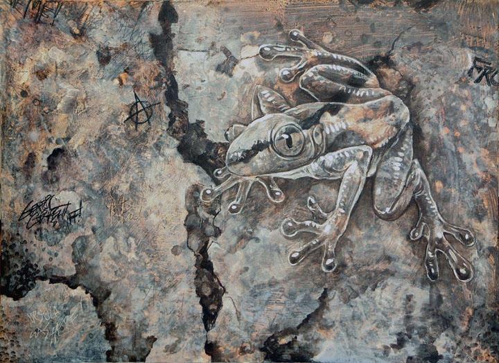 Concrete Frog by ursulav