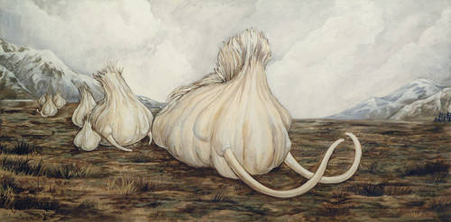 Mammoth Garlic