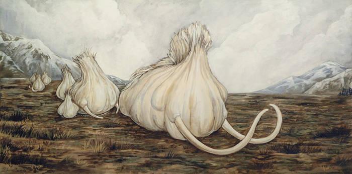 Mammoth Garlic