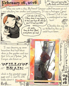 Owl and Willow Brain Journal