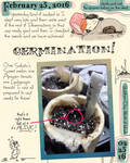 Germination Journal