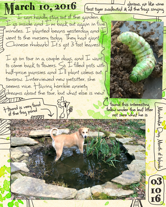 Dog In Frog Pond Journal by ursulav