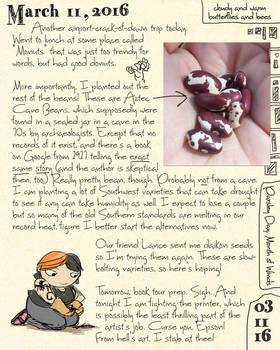 Cave Bean Journal