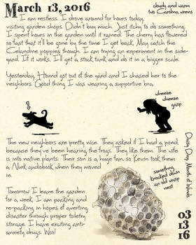 Wasp Nest Journal