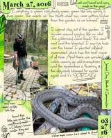 Journal3-27-16 by ursulav