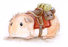 Saddle Guinea by ursulav