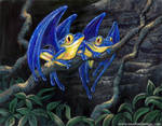 Hyacinth Macawfrogs