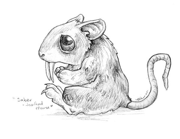Line Drawing Mouse : Saber toothed mouse by ursulav on deviantart