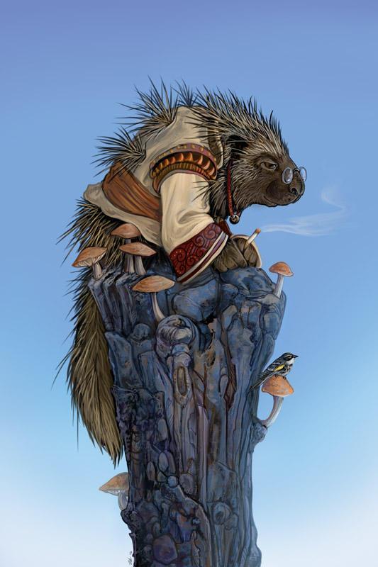 Elder Porcupine by ursulav