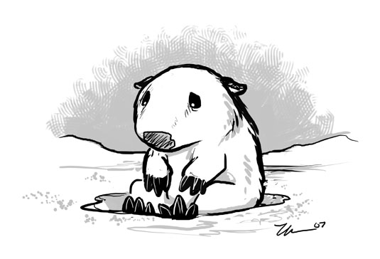 Sad Wombat In Snow by ursulav