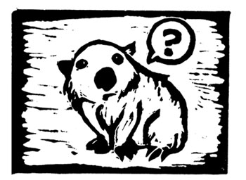 Interrogative Wombat by ursulav