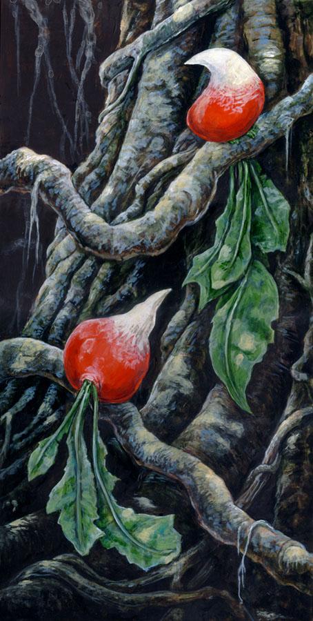 Radishes of Paradise by ursulav