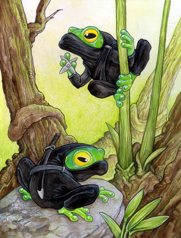 Ninja Frogs By Ursulav On Deviantart