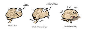 This Is My Brain On Overwork..