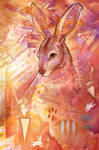 Random Hare