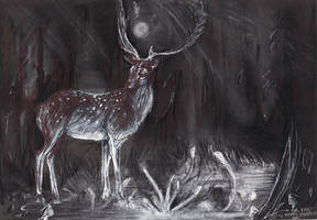 Stag by Syra-Syra