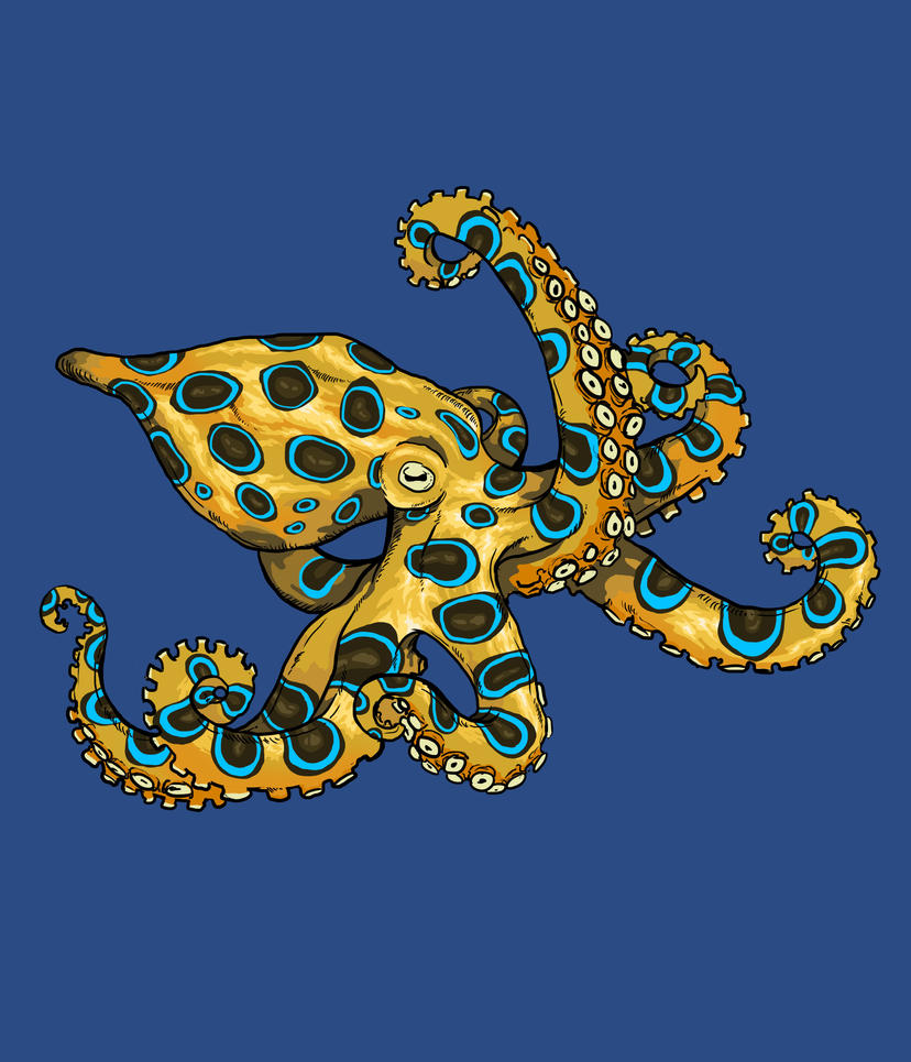 Blue ringed octopus by Laanz