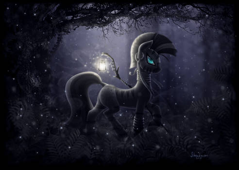 Midnight Walker