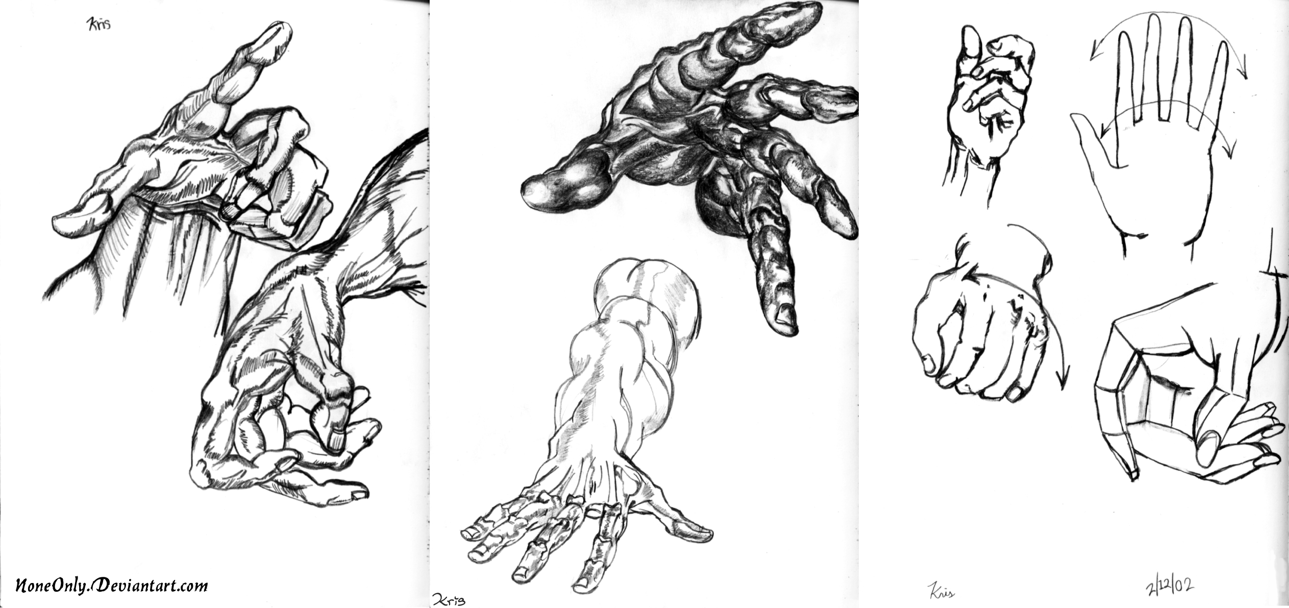 Hand Sketches -Anatomic- by NoneOnly on DeviantArt