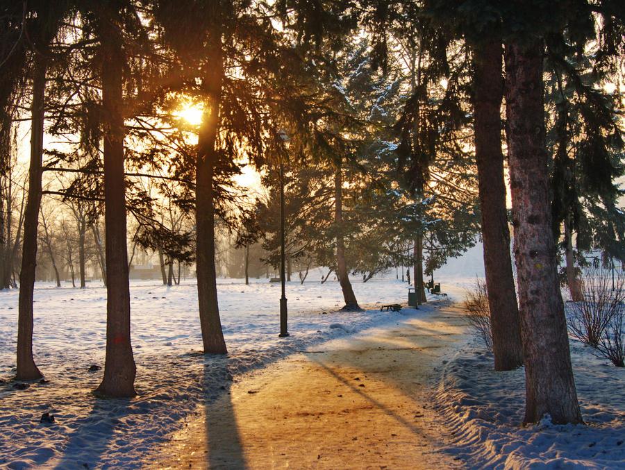 Winter in Krakow VII by starykocur