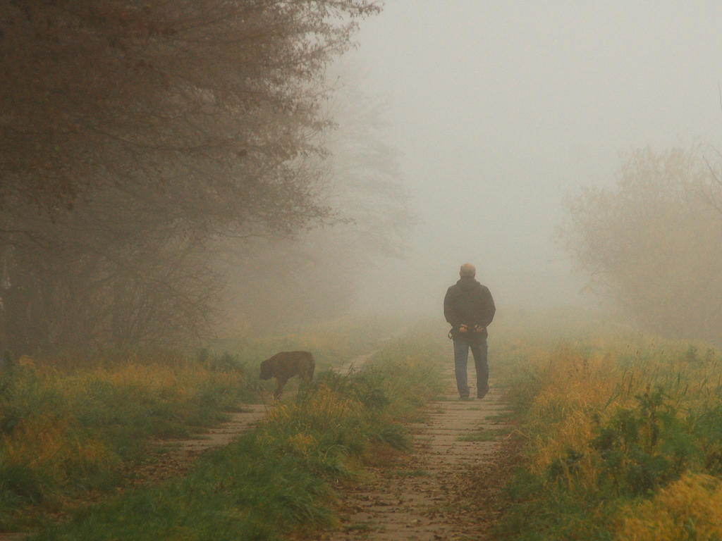 Walking the dog by starykocur