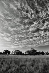 Wispy Cloud by Aztil